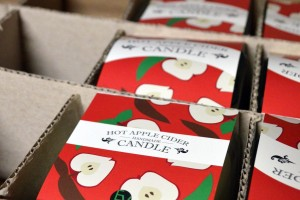 EV Gifts Apple Cider scented candles